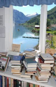 Fjaerland desde bookshop