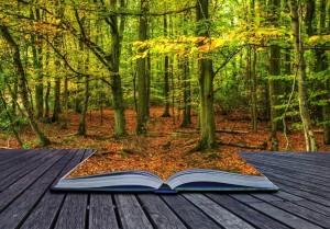 Bosque de libros