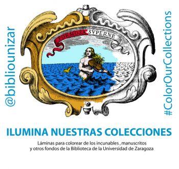 Ilumina nuestras colecciones