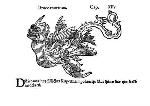 Dioscórides : Pedanii Dioscoridis Anarzabei De medicinali materia libri sex . Franc: apud Chr. Egenolphum, [s.a.] (Excusum Marpurgi: per Christianum Aegenolphum, mense Augusto, 1543)